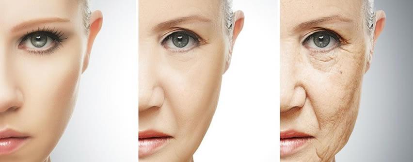 Científicos detectan los genes causantes del envejecimiento