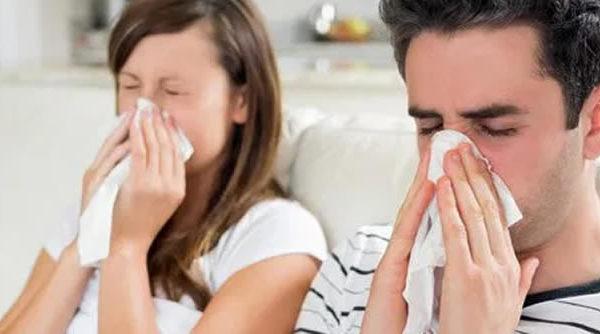 La ciencia crea cercos para la gripe