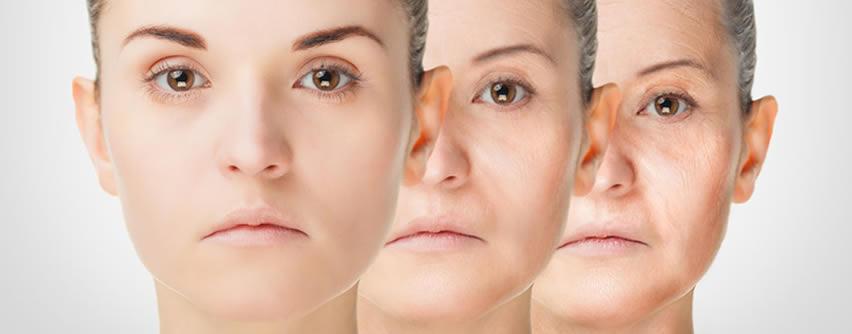 Descubren cómo retrasar el envejecimiento a través de un producto natural