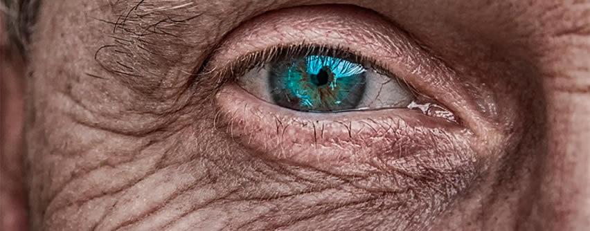 Científicos descubren por qué envejece la piel