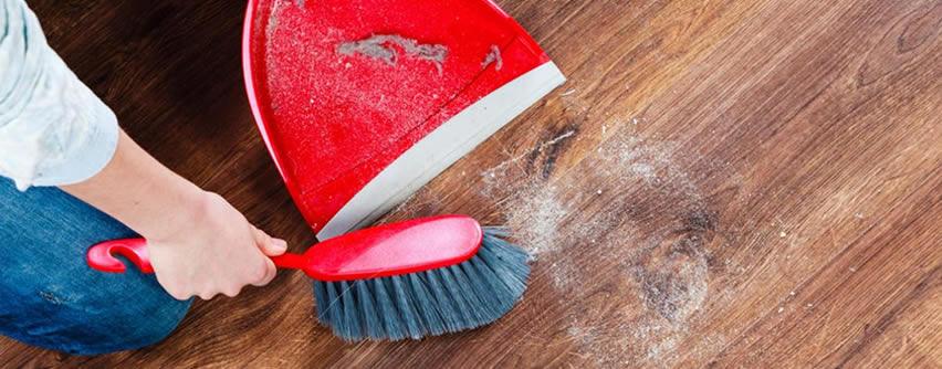 El polvo del hogar podría hacernos engordar