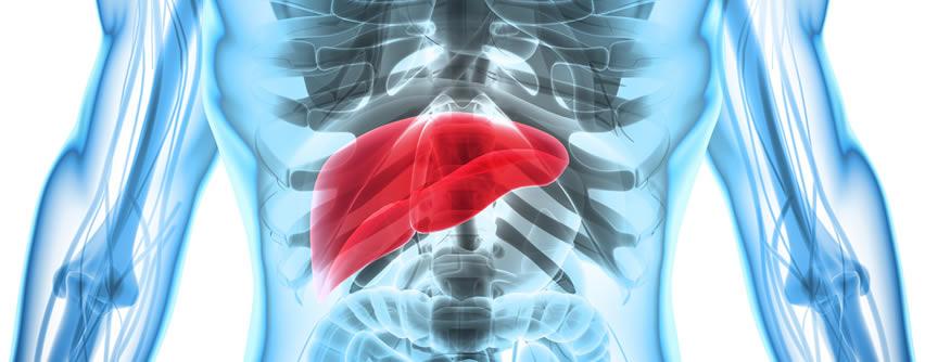 Hepatitis: Concepto, tipos