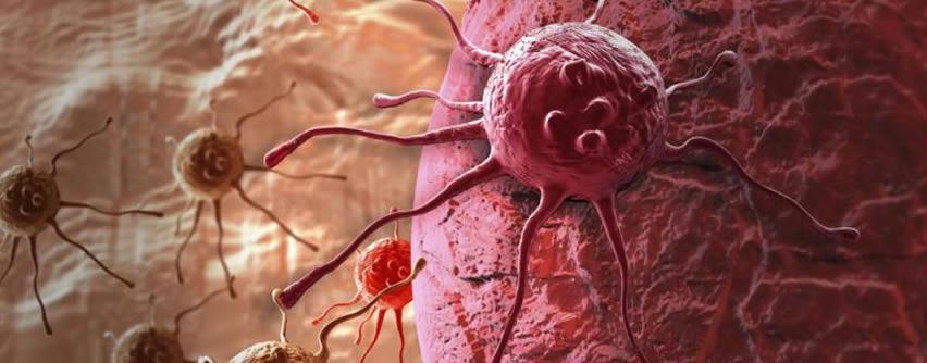 Nuevo estudio genético sobre la metástasis abre nuevas puertas