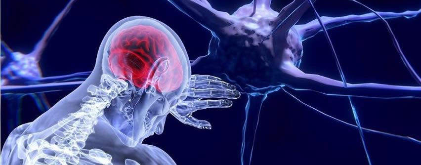 Investigadores descubren cómo frenar el cáncer cerebral más letal
